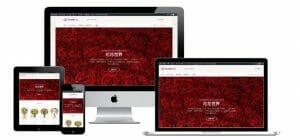 網站設計-超值網頁設計作品3