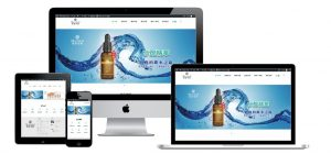 網站設計-精緻網頁設計作品3