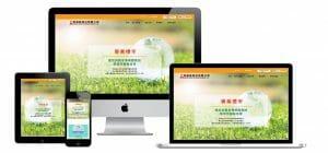 網站設計-精緻網頁設計作品4