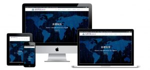 網站設計-專業網頁設計作品4
