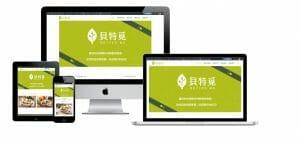 網站設計-專業網頁設計作品6